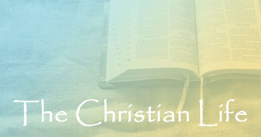 The Christian Life:  Part 1 – Full of Grace and Truth