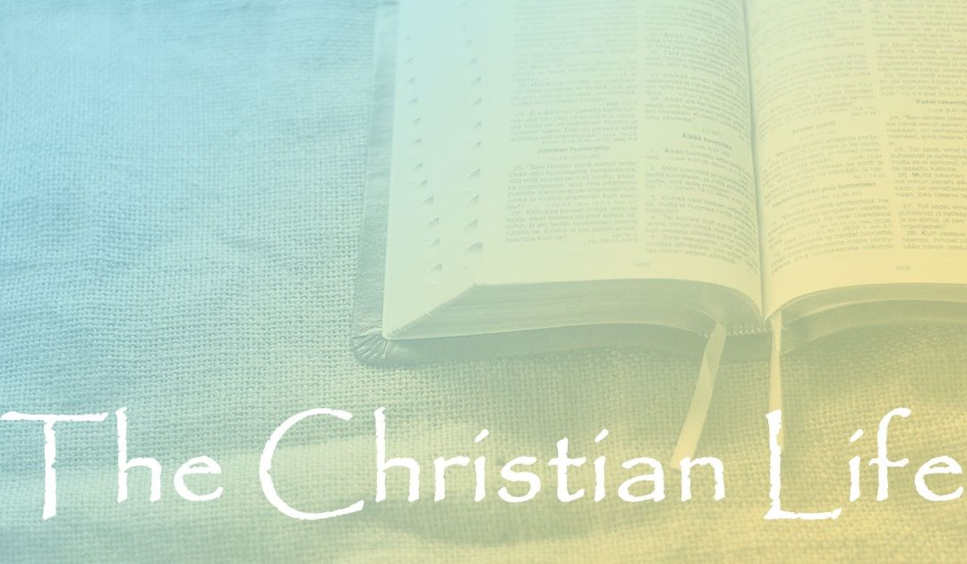 The Christian Life:  Part 93 – Holy and Acceptable