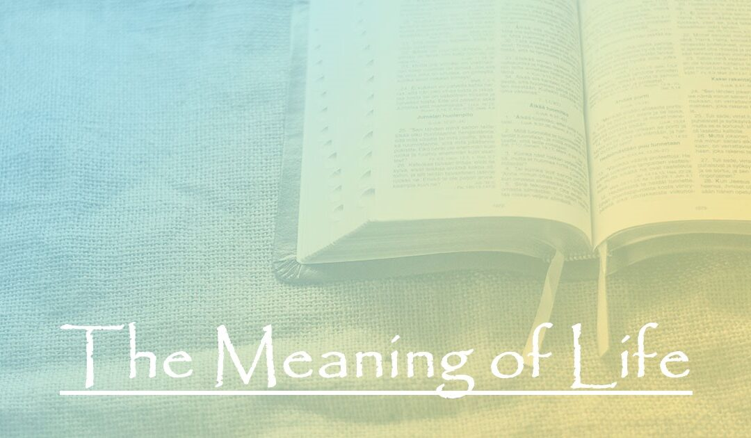 The Meaning of Life:  Part 3 – Our Purposed State to Reflect God's Original State